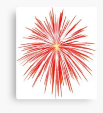Flash of firework Canvas Print