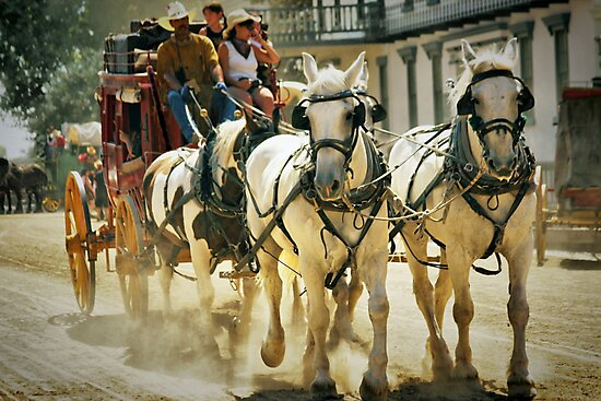 Stagecoach Ride by Barbara  Brown