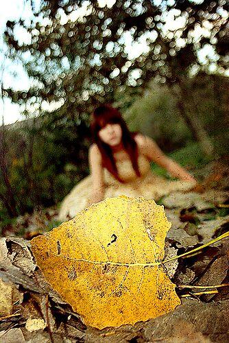 Autumn by Danniela Ramos