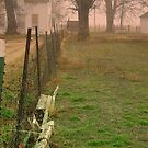 Fenced in ! by Cricket Jones