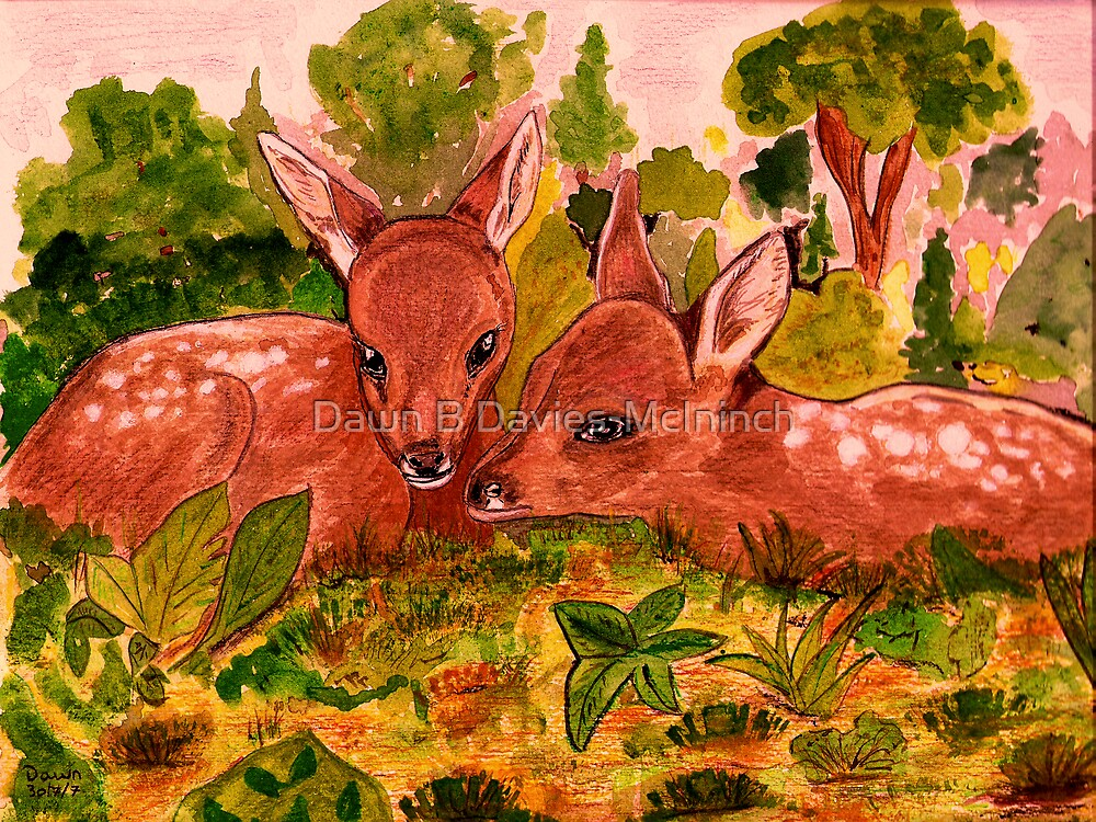 Fawns by Dawn B Davies-McIninch