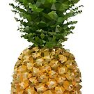 Low Poly Pineapple by EthosWear