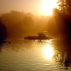 Early morning at the duck pond. by naranzaria