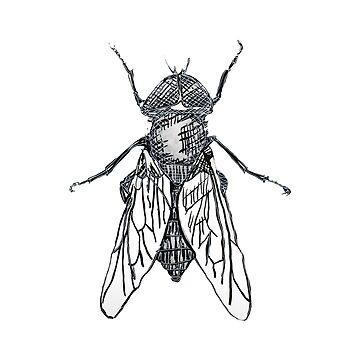 The fly by Pintarrajearte