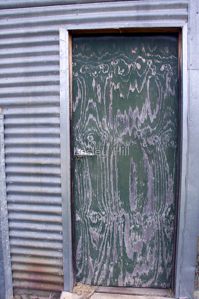 Shed Door! by Lesley  Hill
