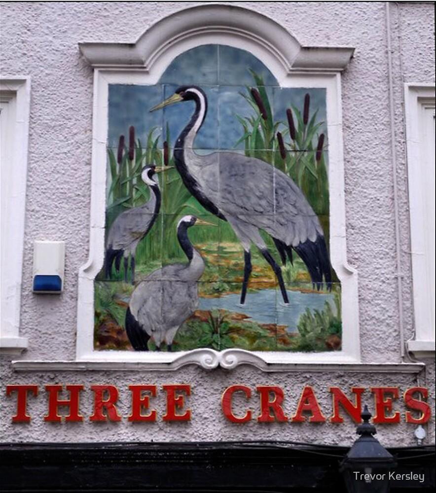 Pub Sign The Three Cranes by Trevor Kersley