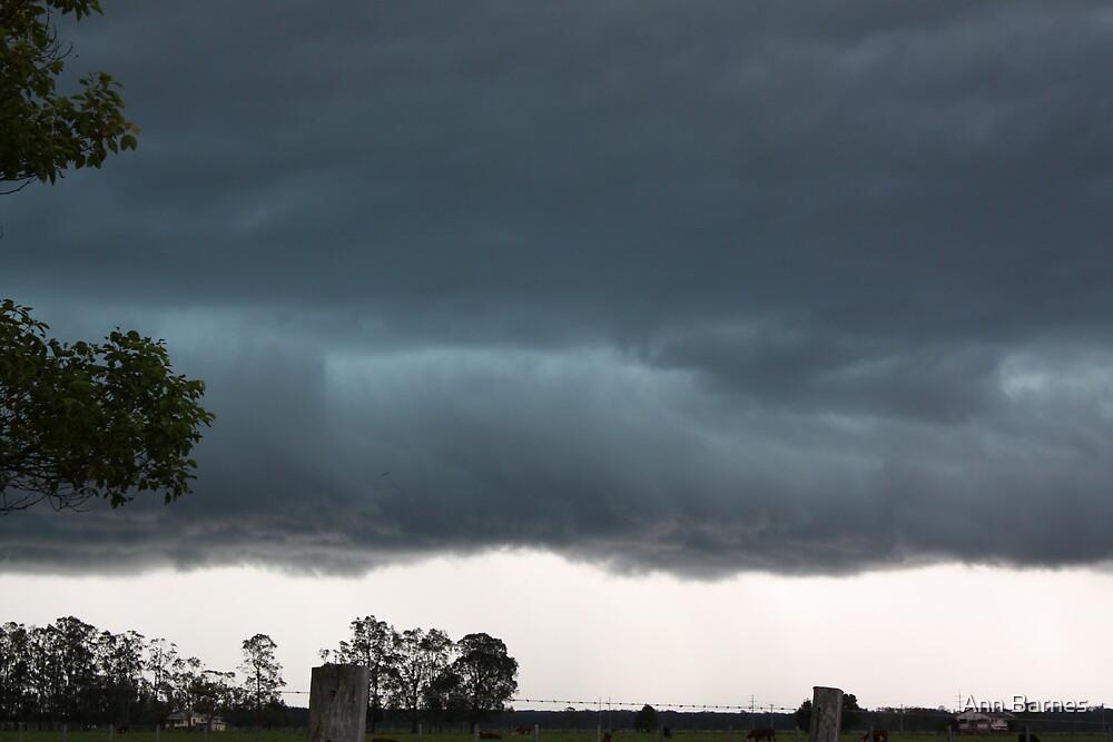 Major Storm - Kempsy Mid NSW Coast Dec 08 by Ann Barnes