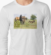 Wild Horses of Montana Long Sleeve T-Shirt