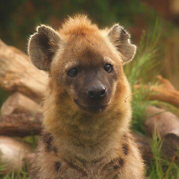 Hi Hyena by PishPosh