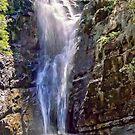 Mathinna Falls - Tasmania - Australia by TonyCrehan
