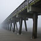 """The Outgoing Fog by Arthur """"Butch"""" Petty"""