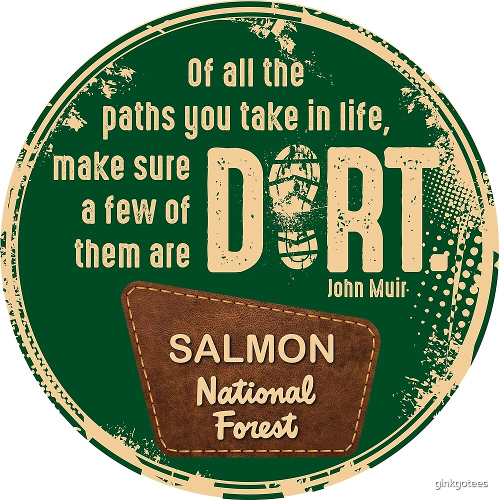 Salmon National Forest: Of all the paths you take in life... by ginkgotees