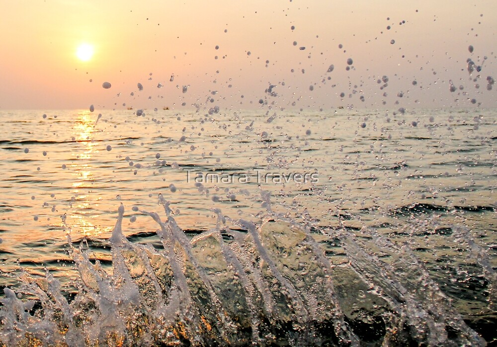 Splashed and refreshed.. by Tamara Travers