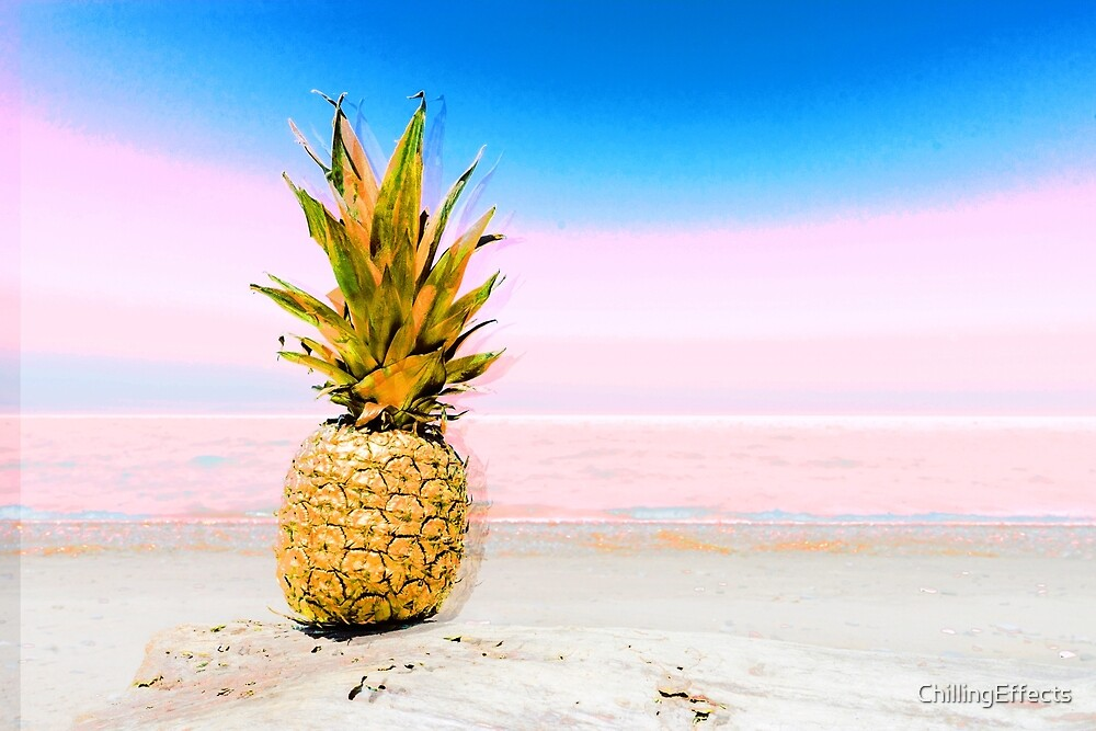 Lone Pineapple on a Beach by ChillingEffects