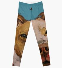 Amerikanischer Pitbull Leggings