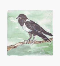 Domino, the Pied Crow (Corvus albus) Scarf