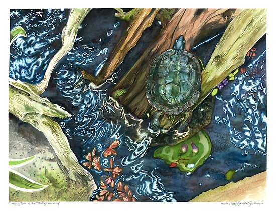 Snapping Turtle on Drift Wood Watercolour  by artkarolina