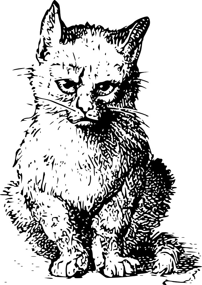 The original Grumpy Cat by Cygopat