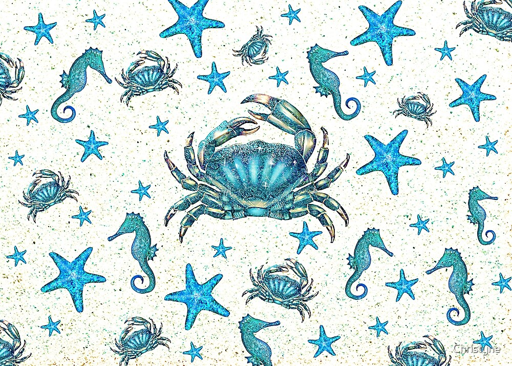 Blue Crab by Christyne
