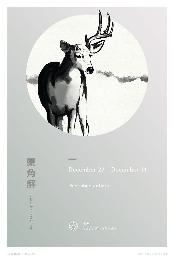 Deer Shed Antlers by Lisa Furze