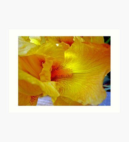 Iris Yellow Art Print