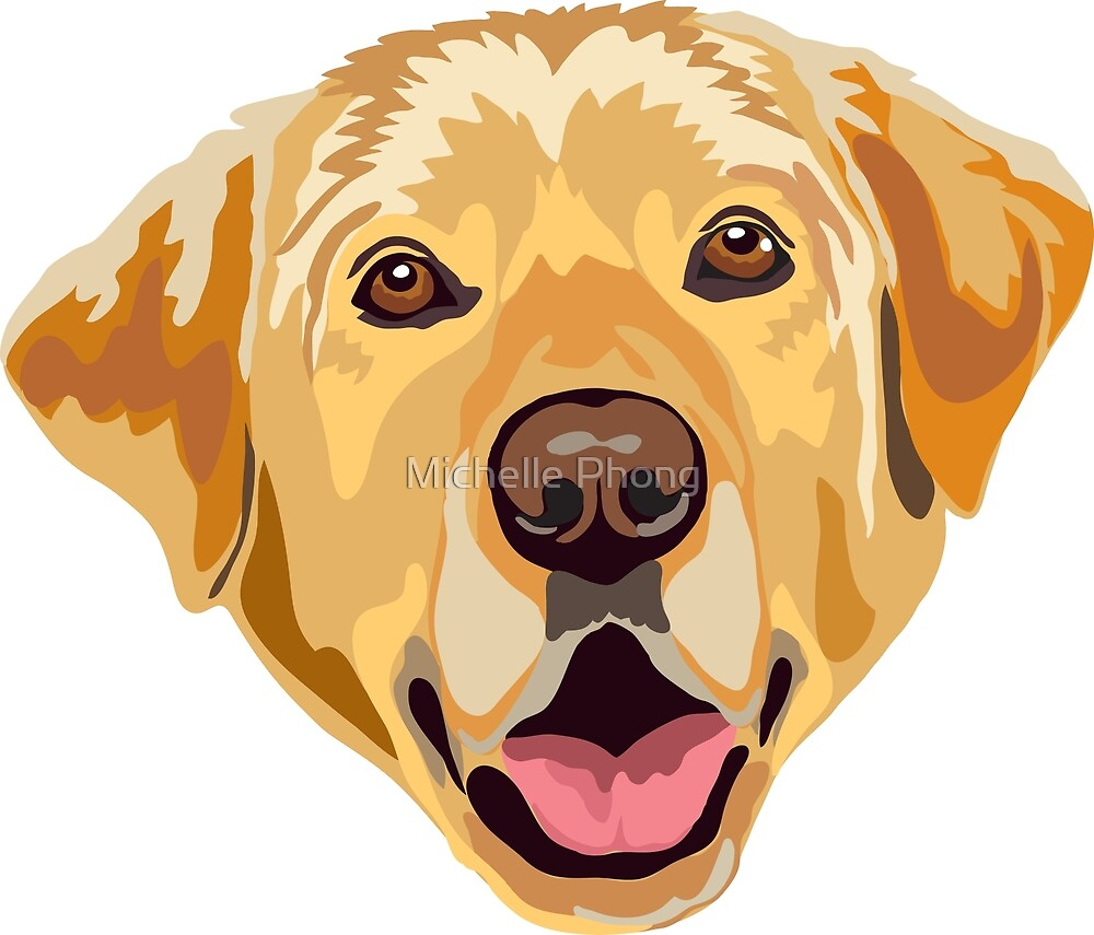 Yellow Labrador  by Michelle Phong