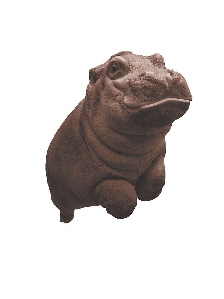 Hippo by JosephxRod