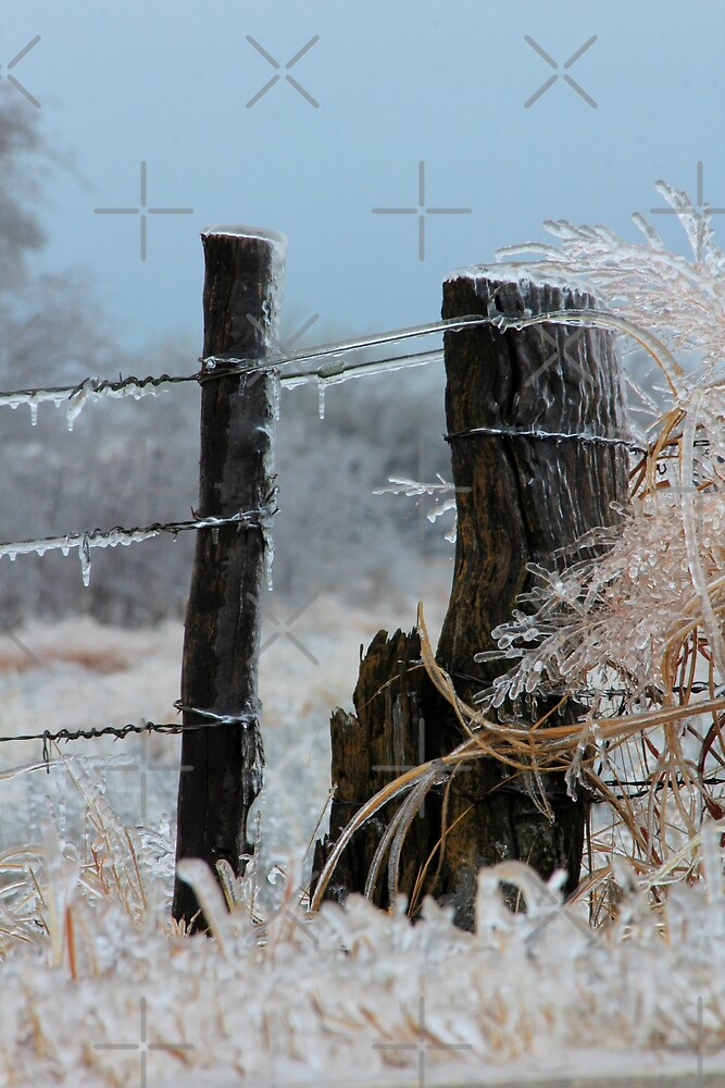 Ice Covered Fence by ROBERTDBROZEK