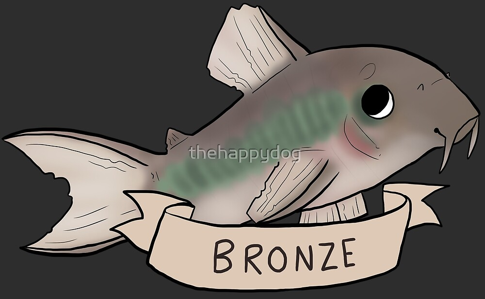 Bronze Cory (Common) by Pinto Sketches