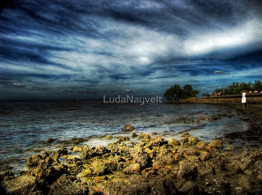 Another view of Port Charlotte beach, FL by LudaNayvelt