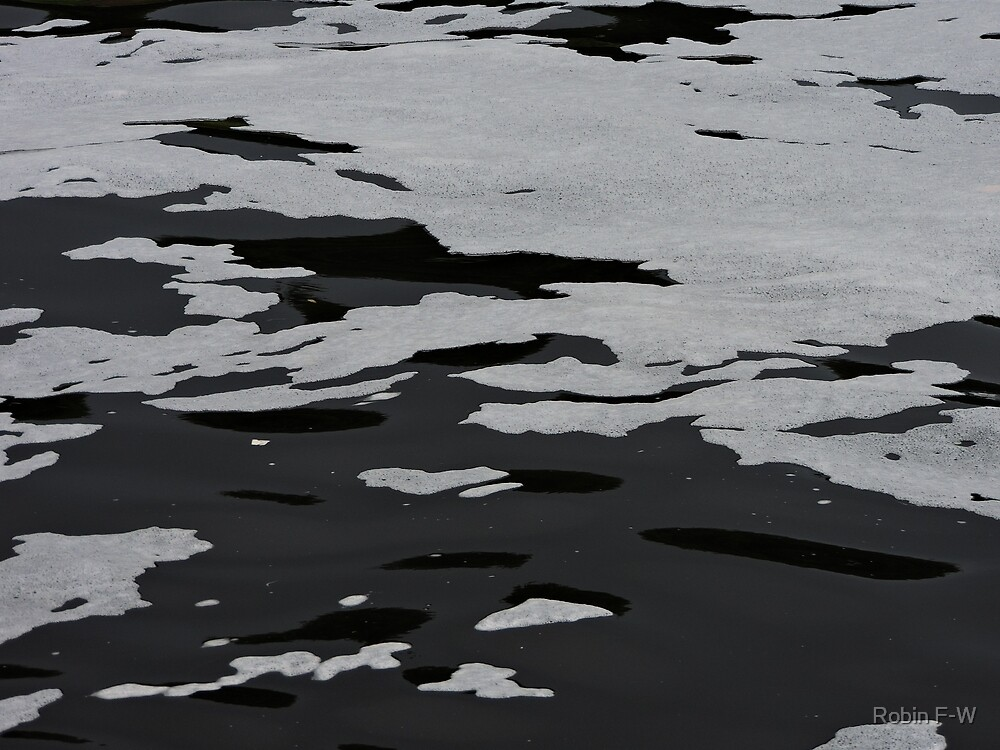 Abstract Monochrome Water and Bubbles by Robin F-W