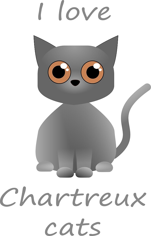 I love Chartreux cats - By Matilda Lorentsson by M-Lorentsson