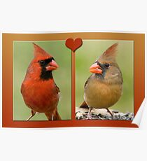 Mr. and Mrs. Cardinal Poster