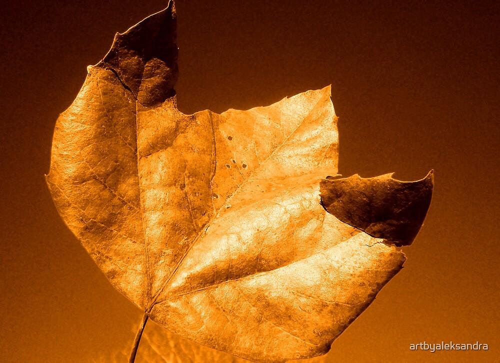 Leaf III by artbyaleksandra