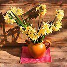 Narcissus by jean-louis bouzou