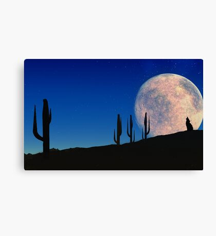 Desert Song Canvas Print