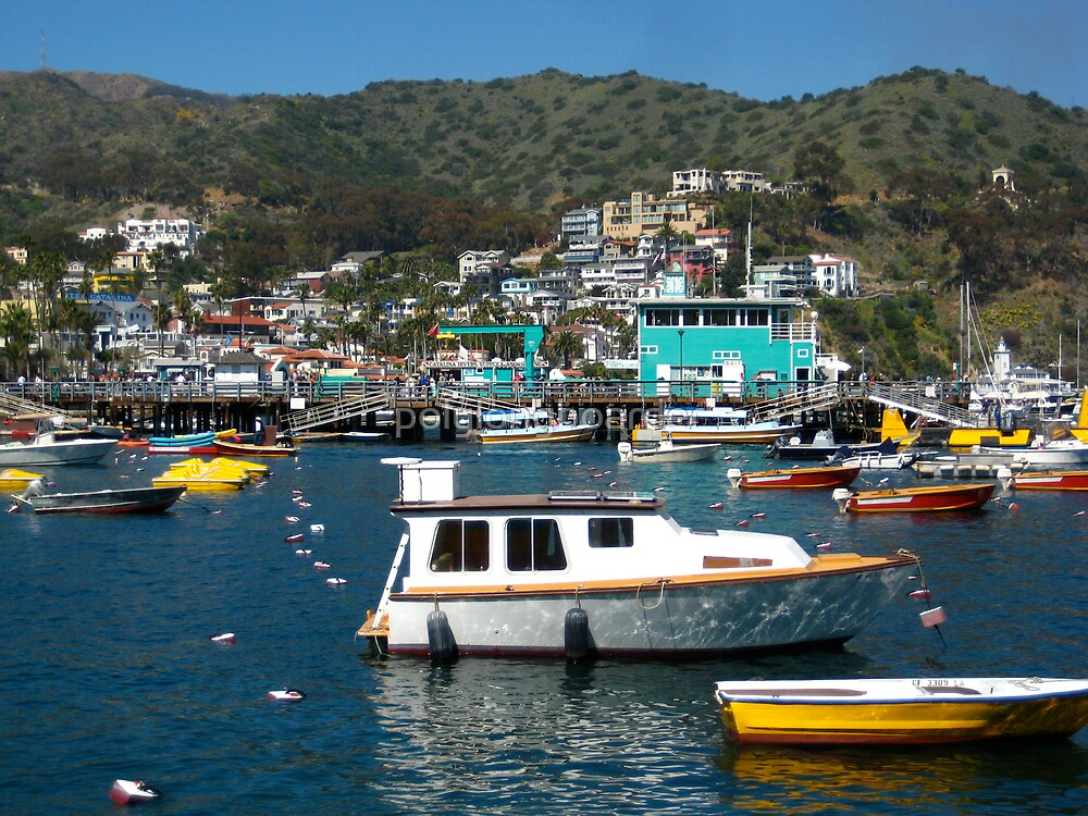 Catalina Harbor and Pier by polylongboarder