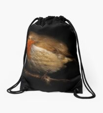 Portrait of a Robin Drawstring Bag