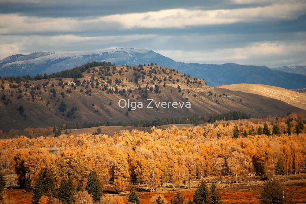 Golden Autumn by Olga Zvereva