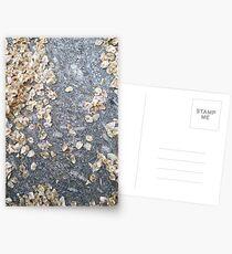 Fallen Leaves Postcards