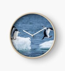 Adelie penguin jumping between two ice floes Clock