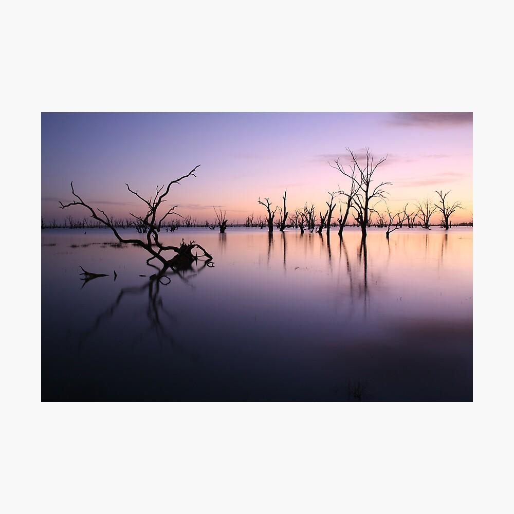 Lake Victoria Pre-Dawn, Australia Photographic Print