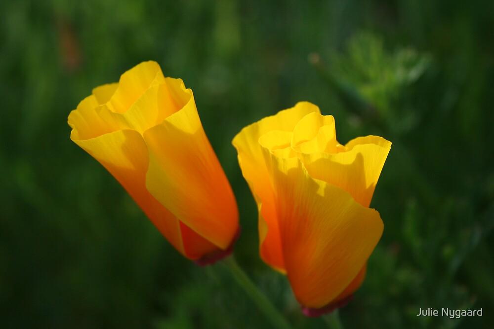 In Bloom by Julie Nygaard