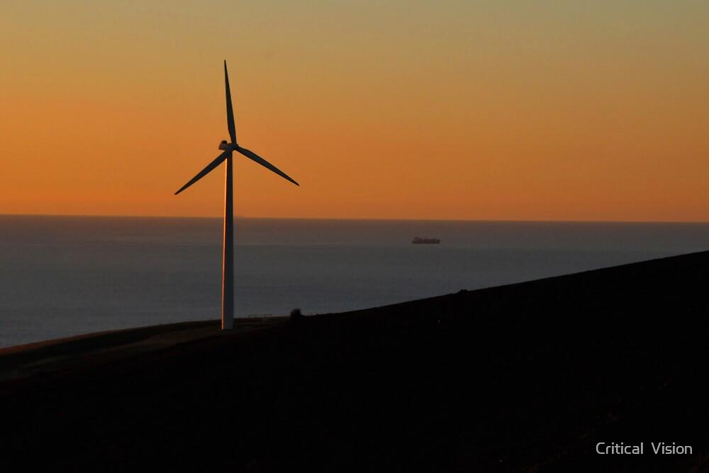 Cape Jervois Wind Turbine by Critical  Vision