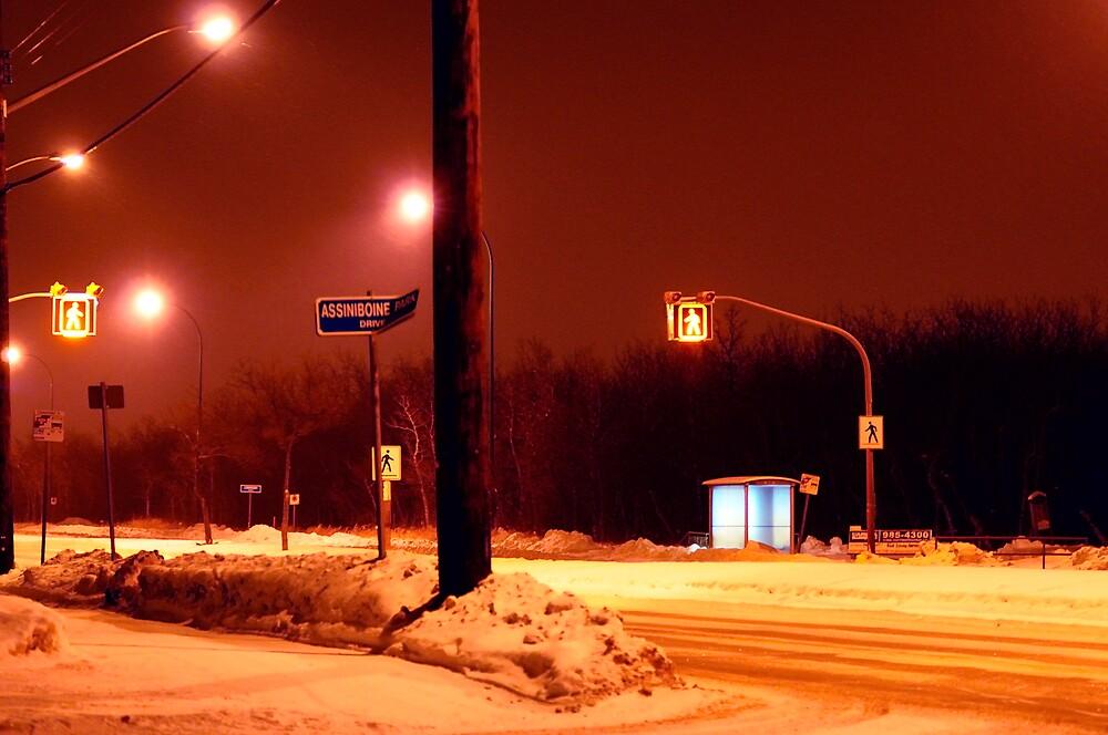 Bus stop on Corydon Ave by Geoffrey