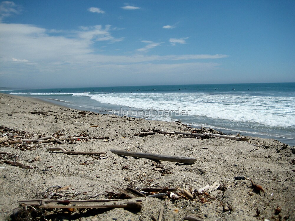 Up-close of Sand and Twigs at the Beach by polylongboarder