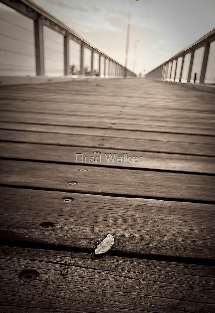 Wellington Point - Jetty by Brad Walker