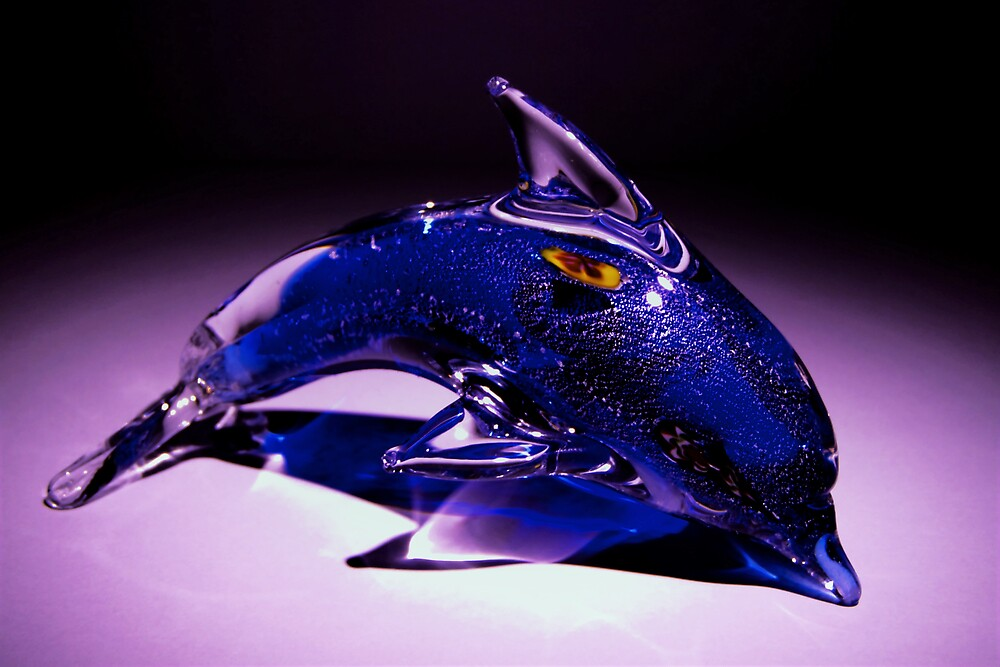 Glass Dolphin by Emjay01