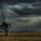 Warrumbungles storm 002 by pedroski