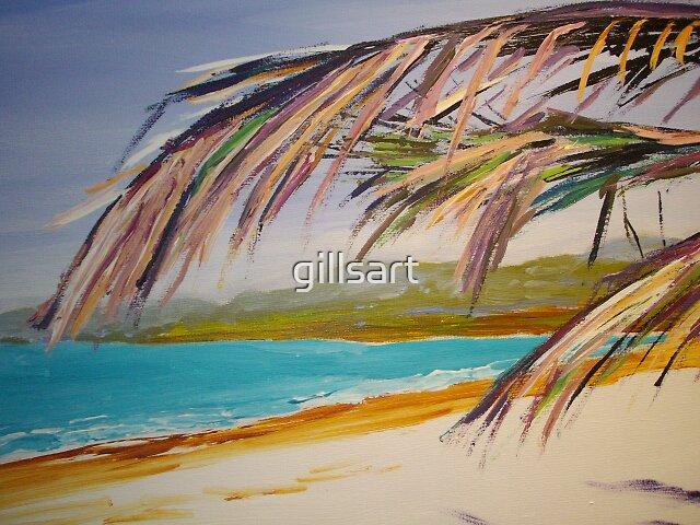 Port Douglas  by gillsart